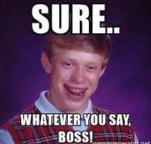 Image Result For Whatever Meme Bad Luck Brian Memes Bad Luck