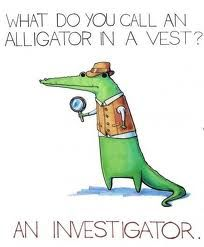 new concept 62024 f8a33 alligator pun Silly Jokes, Comedy, Make You Smile, Grinch, Funny Pictures,