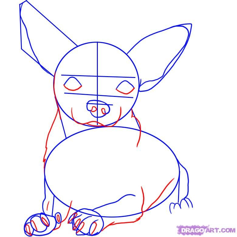 how to draw a chihuahua step 3