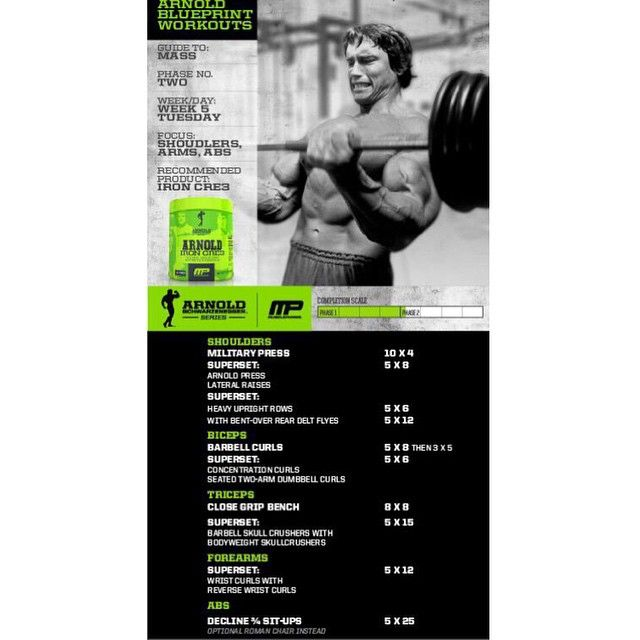 Arnold Blueprint To Mass   Shoulders/Arms/Abs Powered By #IronCre3! Tag  Someone That Wants Arms Like Arnold!
