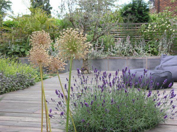 Award Winning Garden Designers David Keegan Garden Design Portfolio Cheshire And North West Uk Garden Design Landscape Design Garden Inspiration