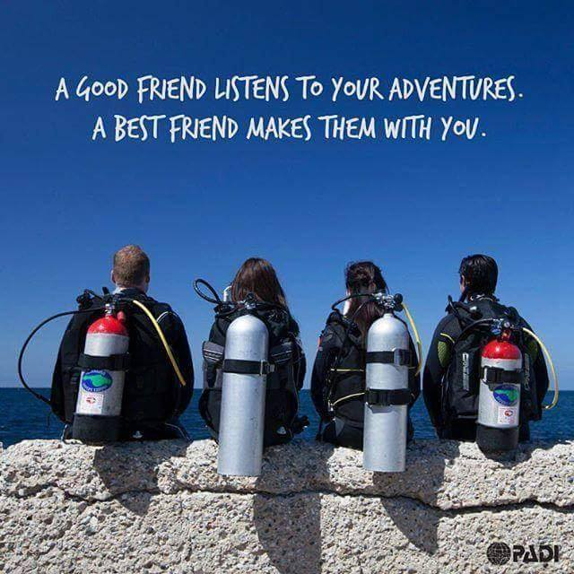 Best Dive Shop Divers Direct Diving Buddy Quote Diving Equipment