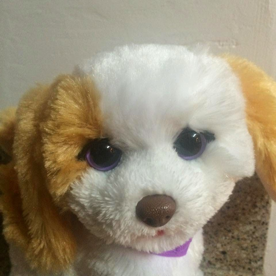 My bouncing pup by furreal friends close up fur real