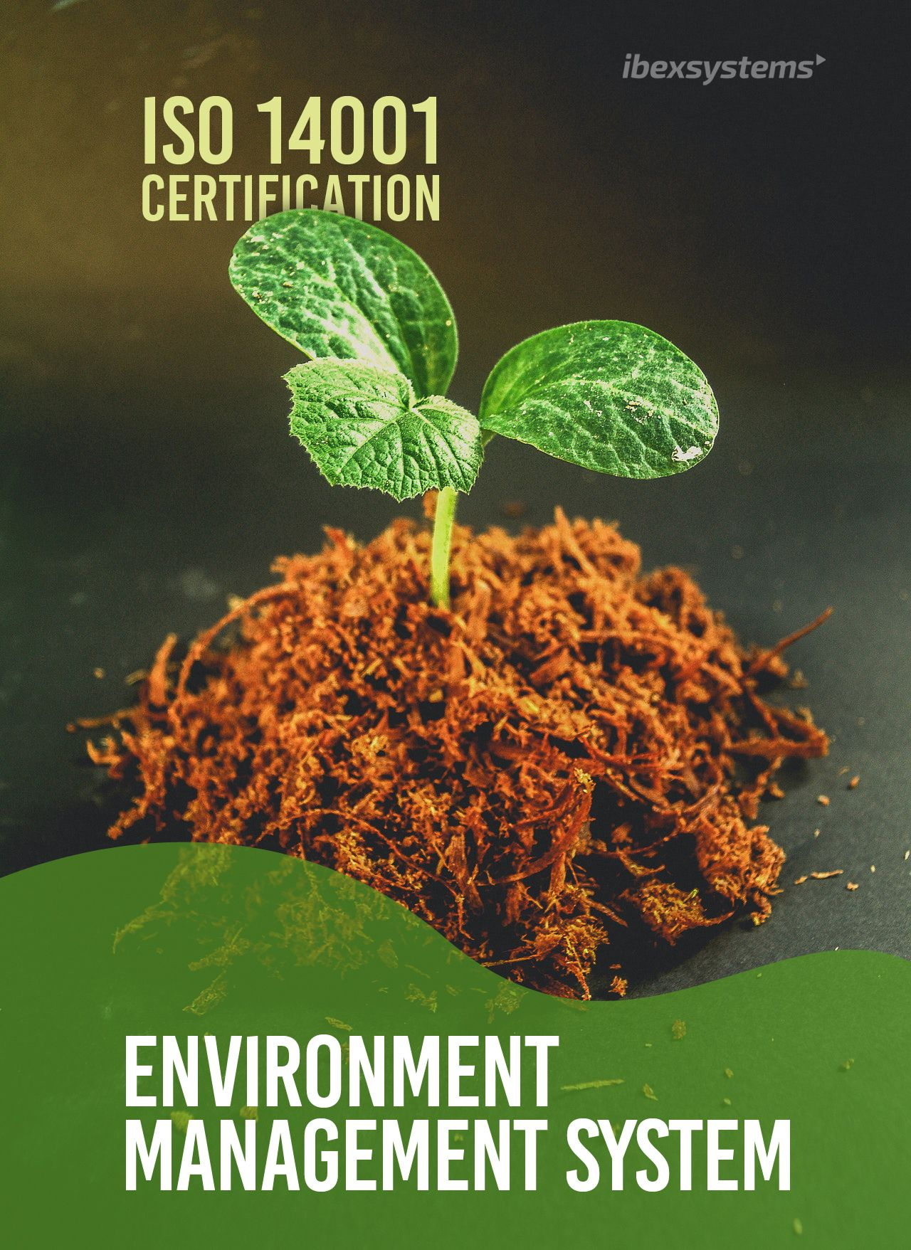 ISO 14001 Consulting in Dubai in 2020 Environmental