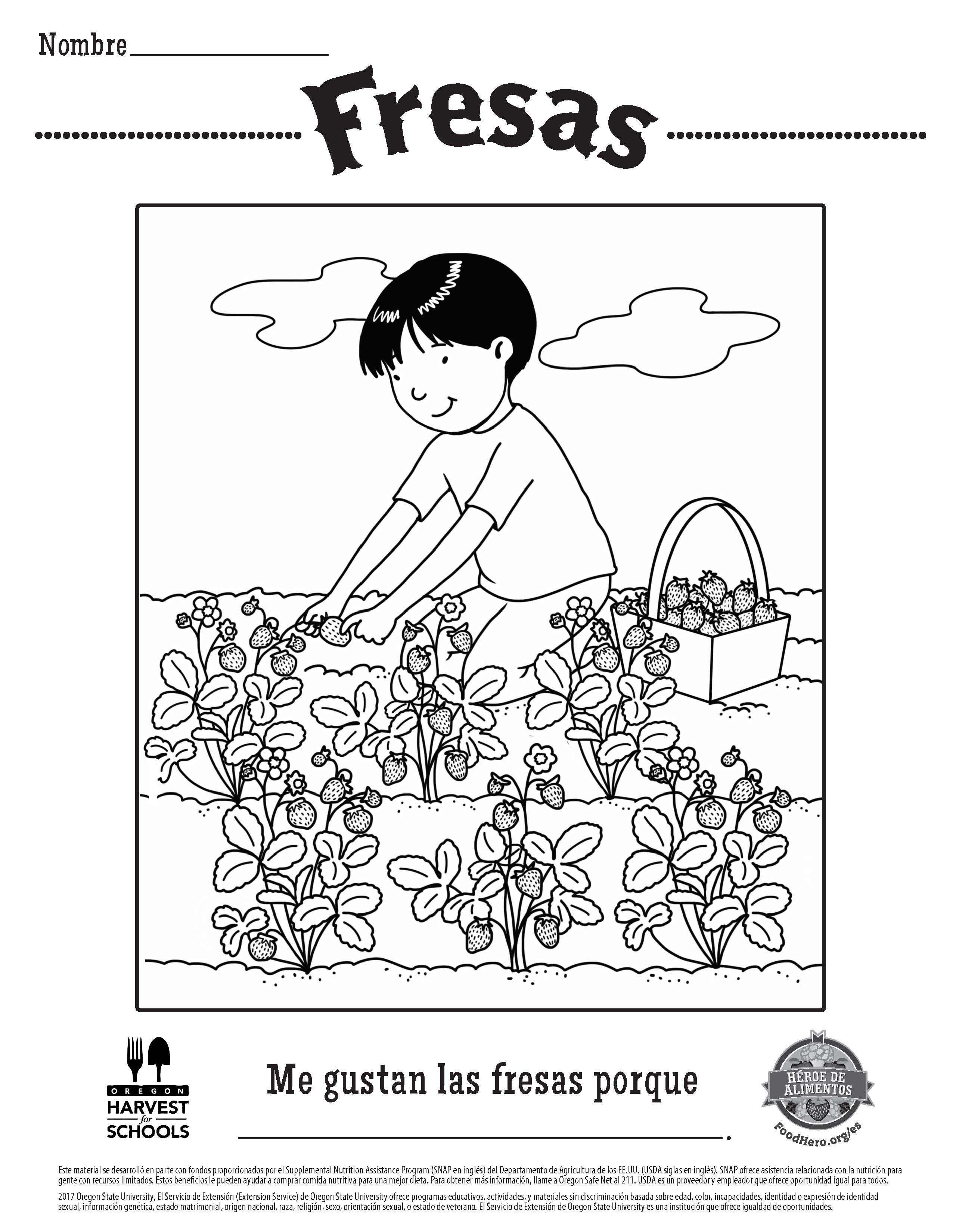 free printable food hero childrens coloring sheet in spanish strawberries coloringpage
