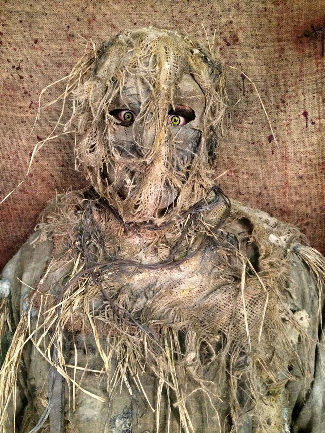 A Scarecrow By Definition Is A Decoy Or Mannequin In The Shape Of A Human  Which