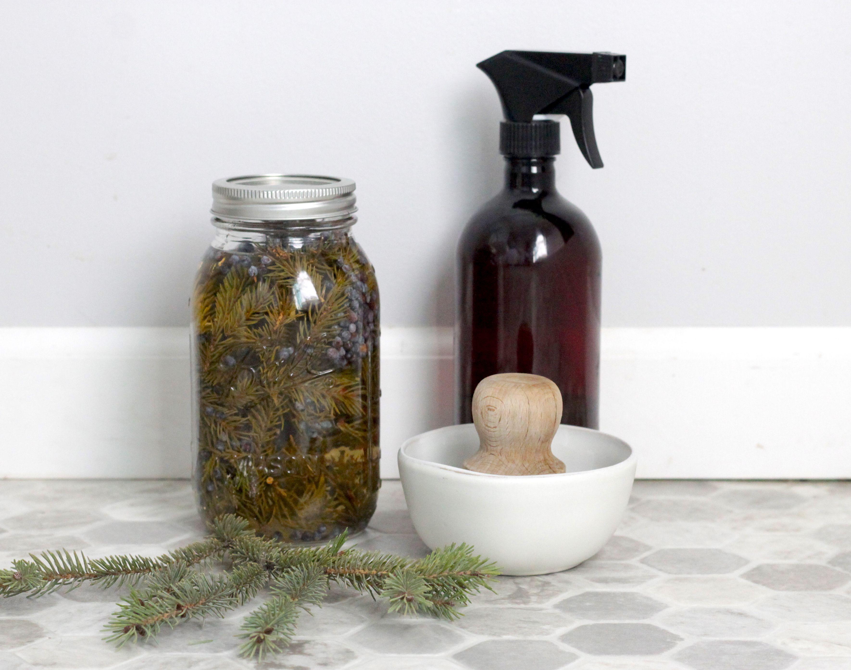 Diy pine scented allpurpose cleaner recipe pine