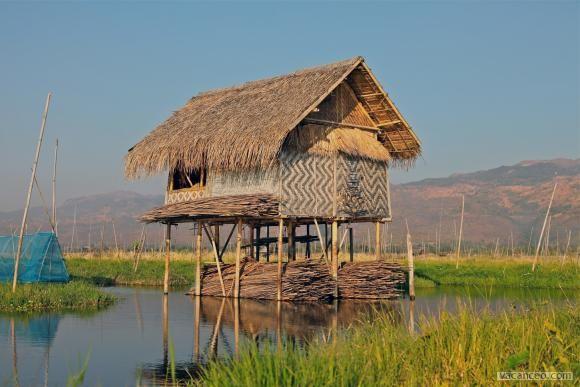 Maison en bambou tressé sur pilotis | Petite maison, Cabane ...