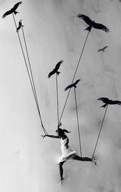 Bist du bereit zu fliegen? Bist du bereit zu fliegen? Dieses Bild hat 2 Wiederholungen. Autor: Tina Herzchen #fly #ready