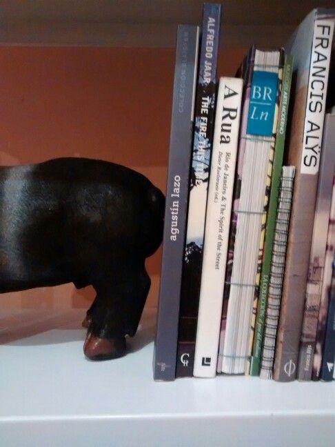 Librero y cochino