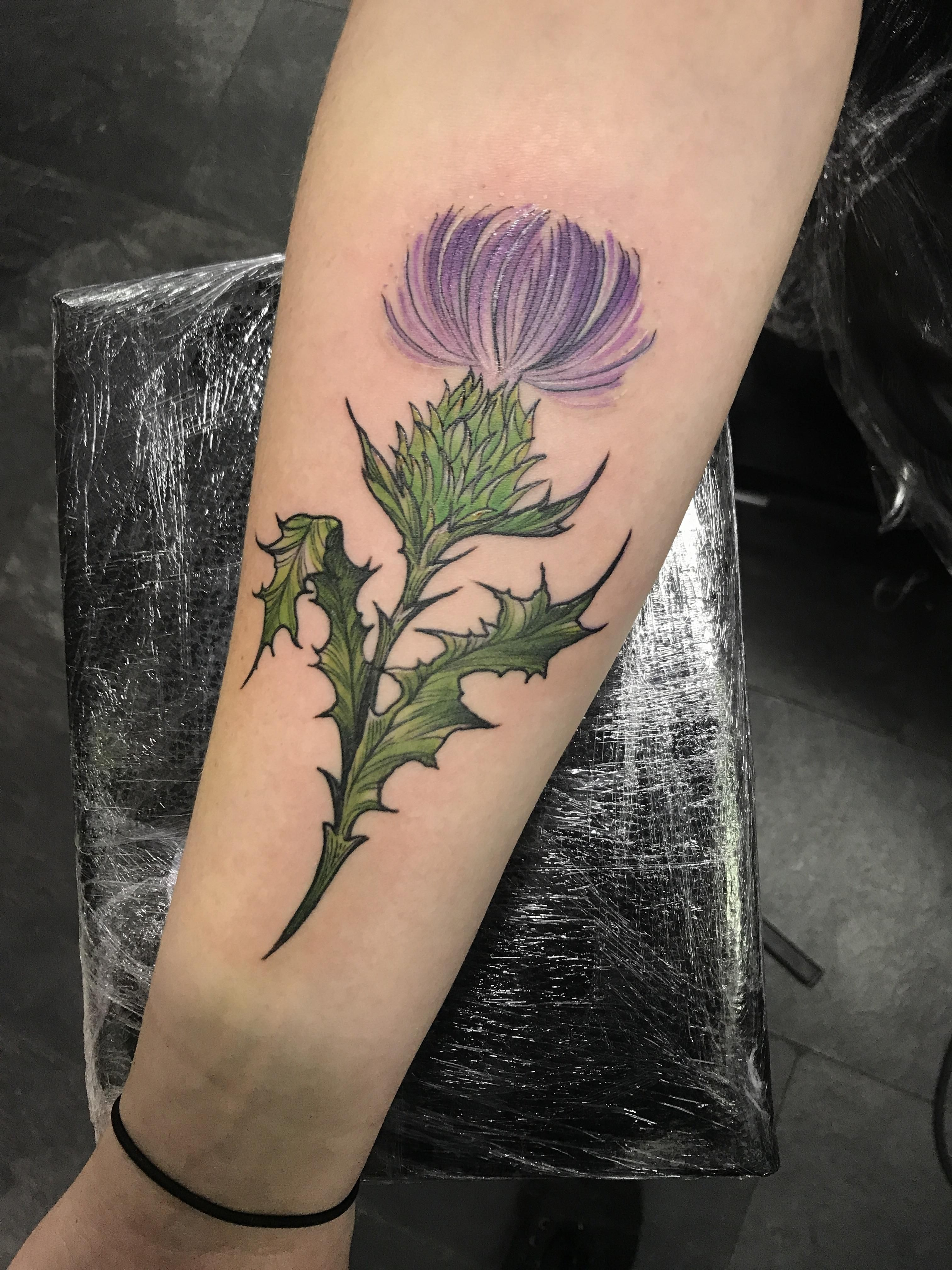 Milk thistle by Kerry Gentle at Red Hot and Blue tattoo