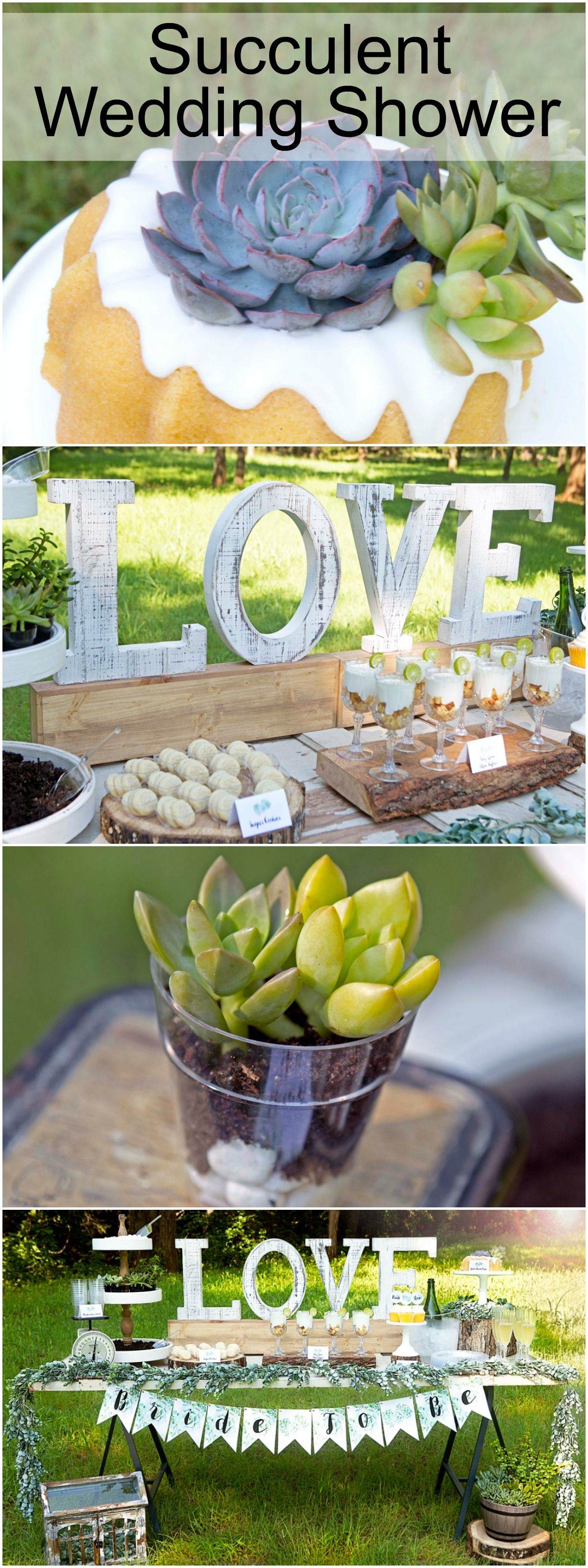 Rustic Wedding Shower - Succulent Wedding Shower - Let Your Love Grow