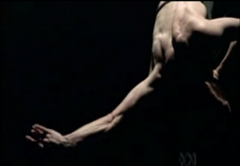 Sylvie Guillem - Two (Rise and Fall)
