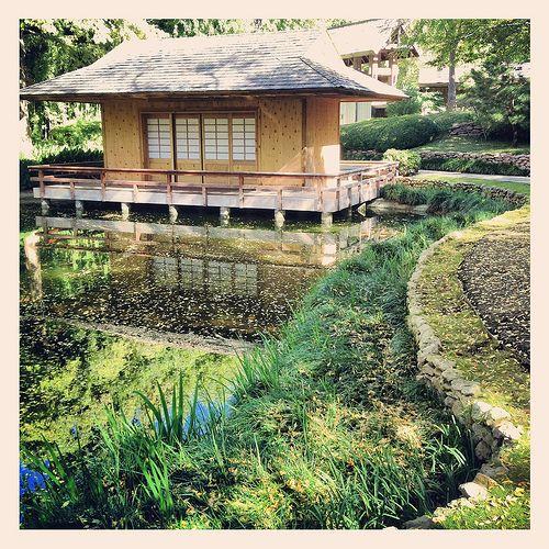 Tea House Pond Japanese Garden Fall Autumn Fort Worth Texas Botanical Gardens -1859