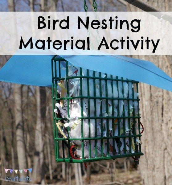 Bird Nesting Material Activity Bird Nesting Material Activities Outdoor Fun For Kids