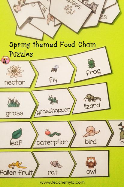 SpringThemed Food Chain Puzzles Food chain, Food
