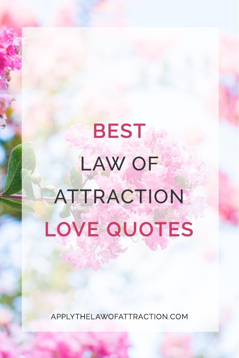 Love Attraction Quotes Best Law Of Attraction Love Quotes  Positive Inspirational Quotes