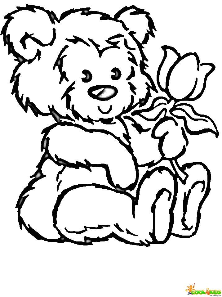 Bear Holding A Book Coloring Page