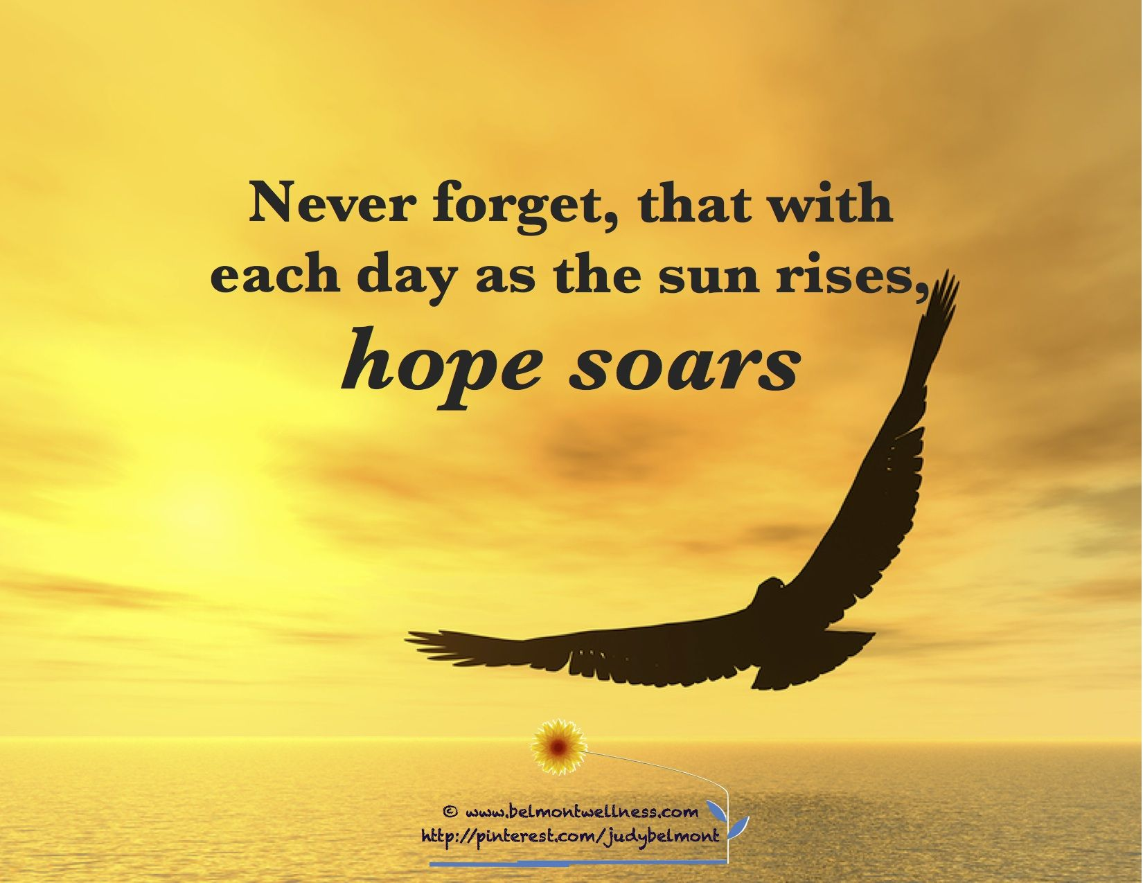 Hope soars every sunrise daily positive inspirations Inspirational quotes about hope