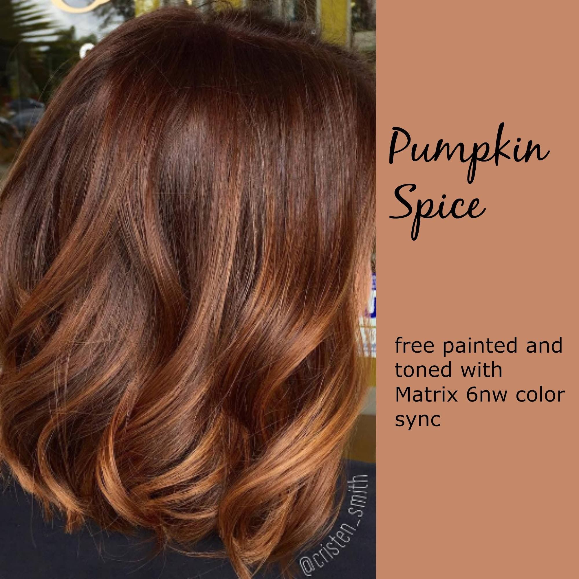 Pin By Amanda Martwick On Hair Ideas Pinterest Hair Coloring