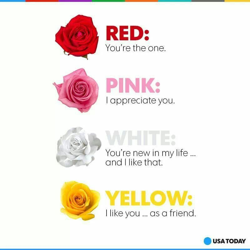Traditional meaning | Rose color meanings, Flowers for you, Friends valentines day