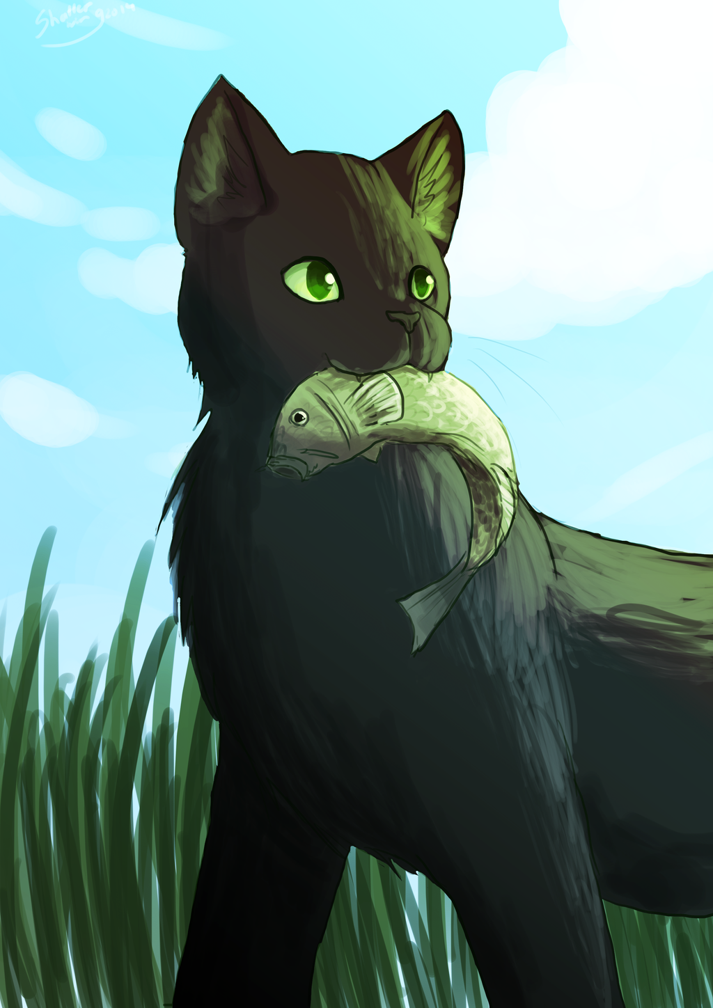 Reedwhisker by on