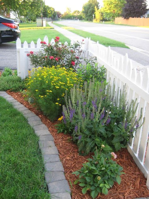 Perennial border inside fence   Small front yard ...