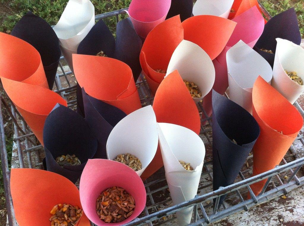 Paper cones at petting zoo