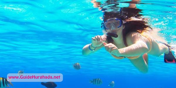 رحلة غطس فى الغردقة استمتع بمغامرة الغطس فى اعماق البحر الأحمر وسط الشعاب المرجانيه و الأسماك النادرة احجز الأن مع شركة جايد ترافي Hurghada Trip Excursions