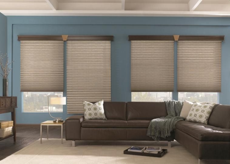 Energy Efficient Pleated Shade Without Cords Perfect For Side By Windows Repinned Budget Blinds Of Walnut Creek