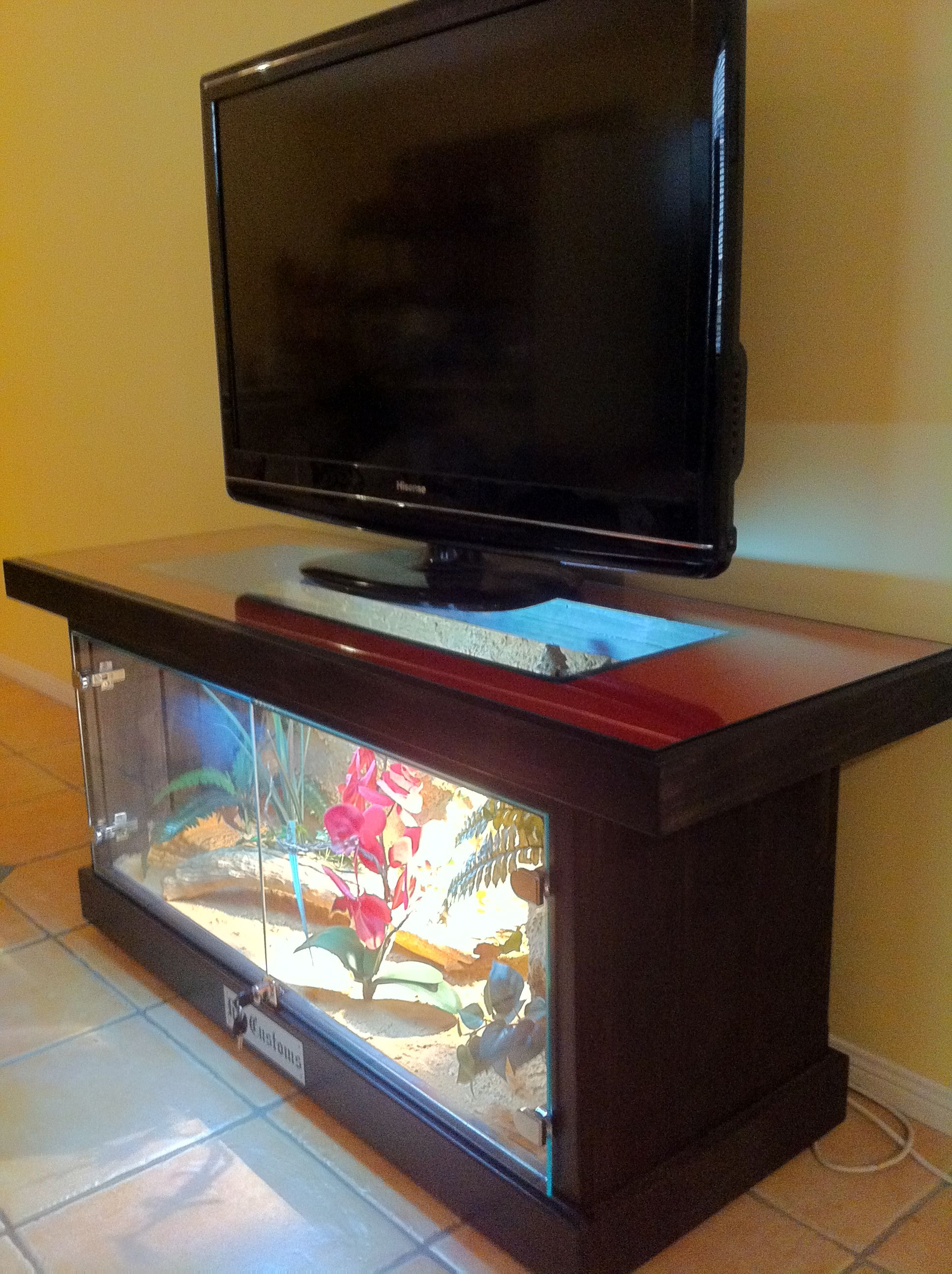 Fish tank tv stand - Bearded Dragon
