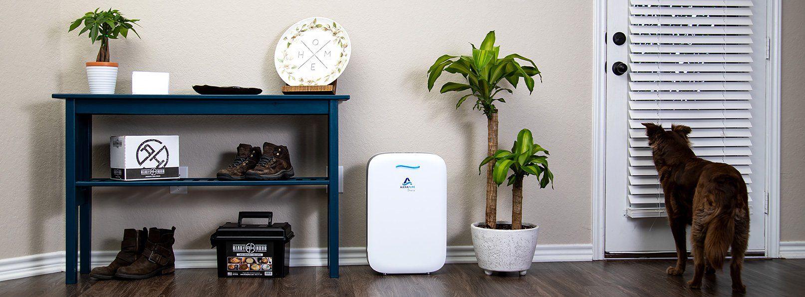 Alexapure Breeze True HEPA Air Purifier in 2020 Hepa air