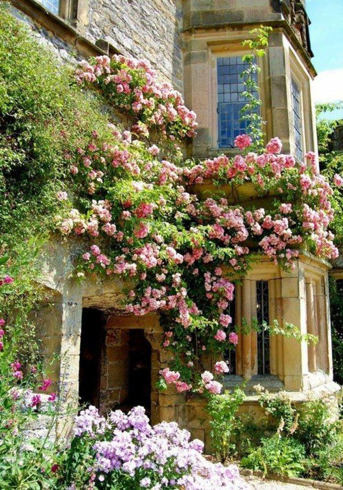 les plantes grimpantes beaucoup d 39 id es pour le jardin art set in stone pinterest garden. Black Bedroom Furniture Sets. Home Design Ideas