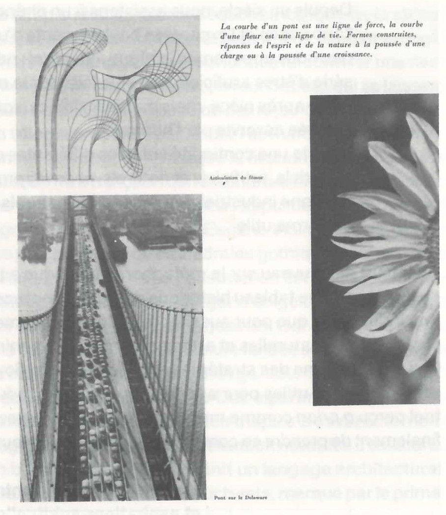 Extrait De André Hermant   Formes Utiles   1959