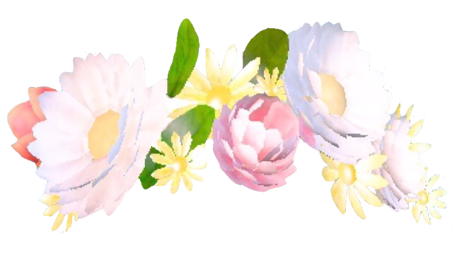 Transparents Photo Snapchat Flower Crown Filter Snapchat Flower Crown Snapchat Flower Filter