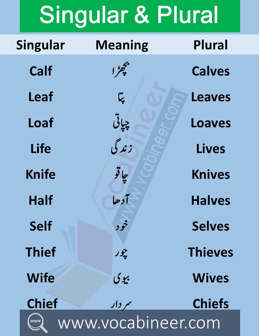 100 Singular Plural Nouns List Examples In Urdu Or Hindi With Pdf Plurals Singular And Plural English Words [ 1122 x 864 Pixel ]