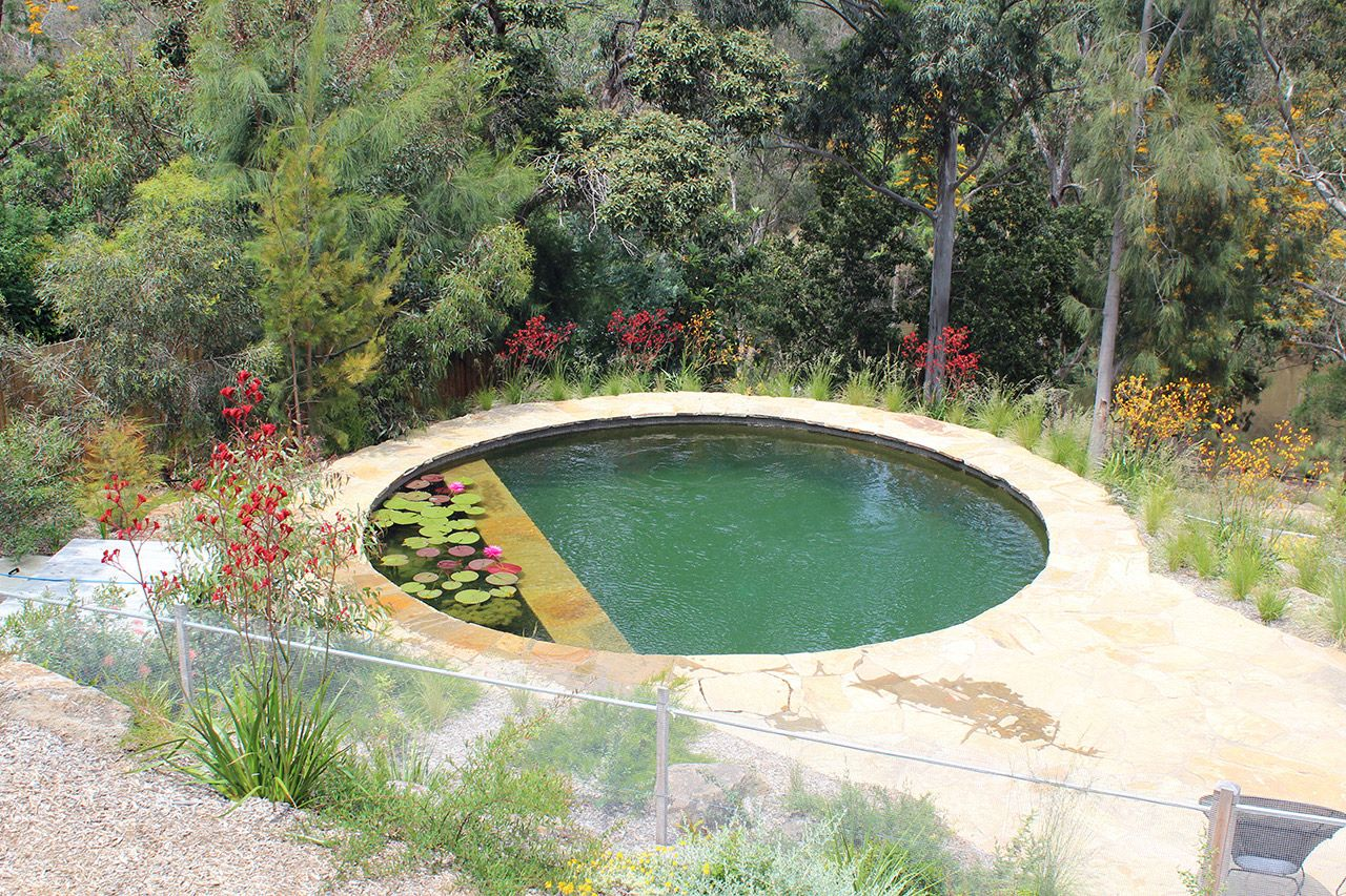 Eco friendly pool designs solar heating and bio filter interior - This Pool Has The Biotop Duo Bio Filter That Cleans The Water Trough A Bio
