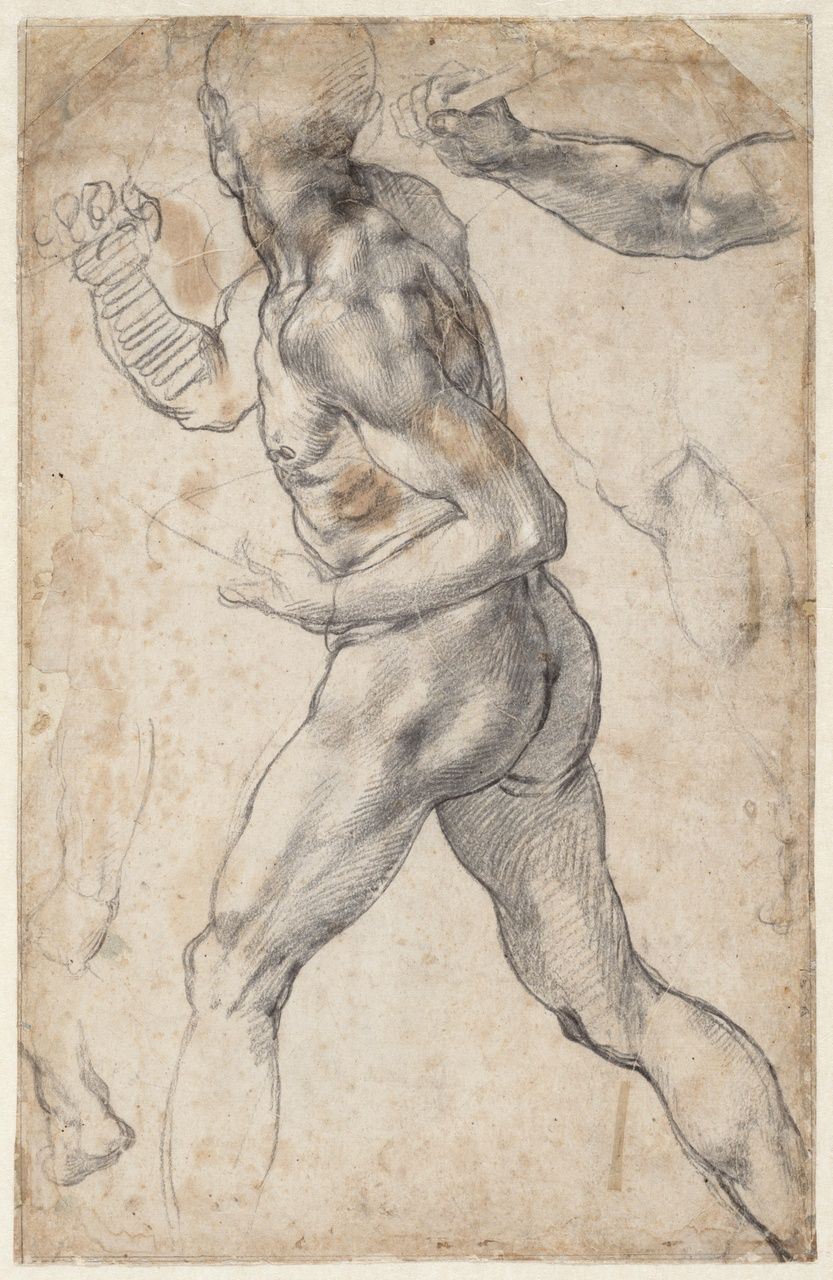 Michelangelo Studies for Sistine ceiling - Creation of Adam ca. 1511 ...