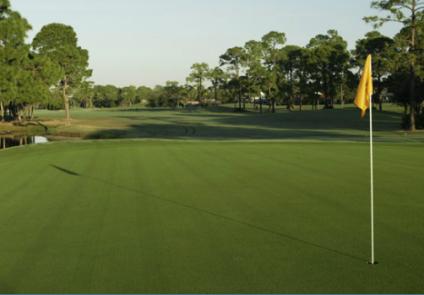 PalmAire Country Club Champions, Sarasota Best golf