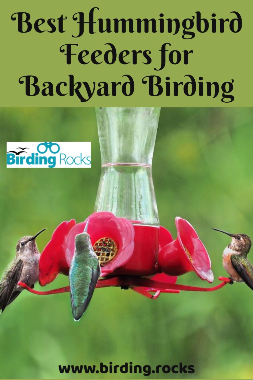 Best Hummingbird Feeders for Backyard Birding 2020 Buyer