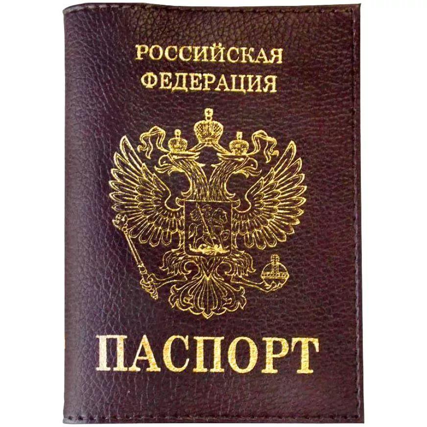 Паспорт картинки россия, днем