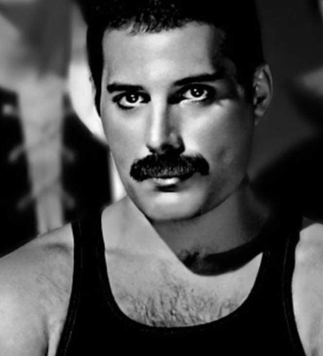 Pin By Ursula67 On Queen Freddie Mercury In 2020 Queen Freddie Mercury Freddie Mercury Queen Pictures
