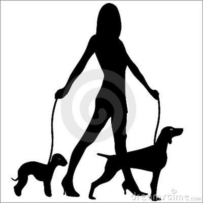 Dog Walking Glamour Woman Silhouette Royalty Free Stock Image