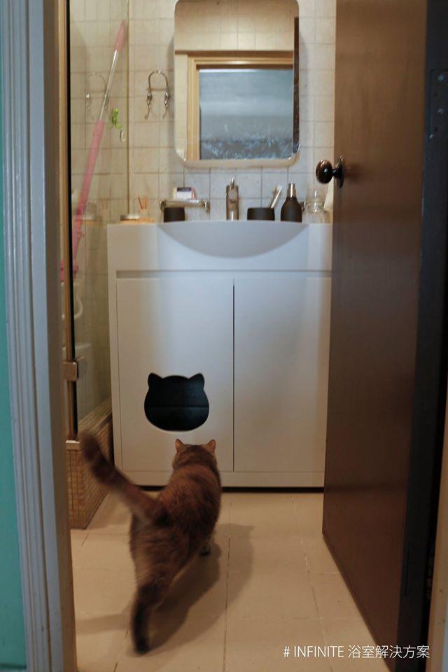 黃大仙天馬苑 訂造洗手盆連地櫃 鏡櫃 Bc 00015 Shower Panels