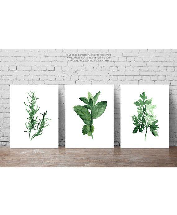 Conjunto de 3 hierbas impresión del arte del por ColorWatercolor