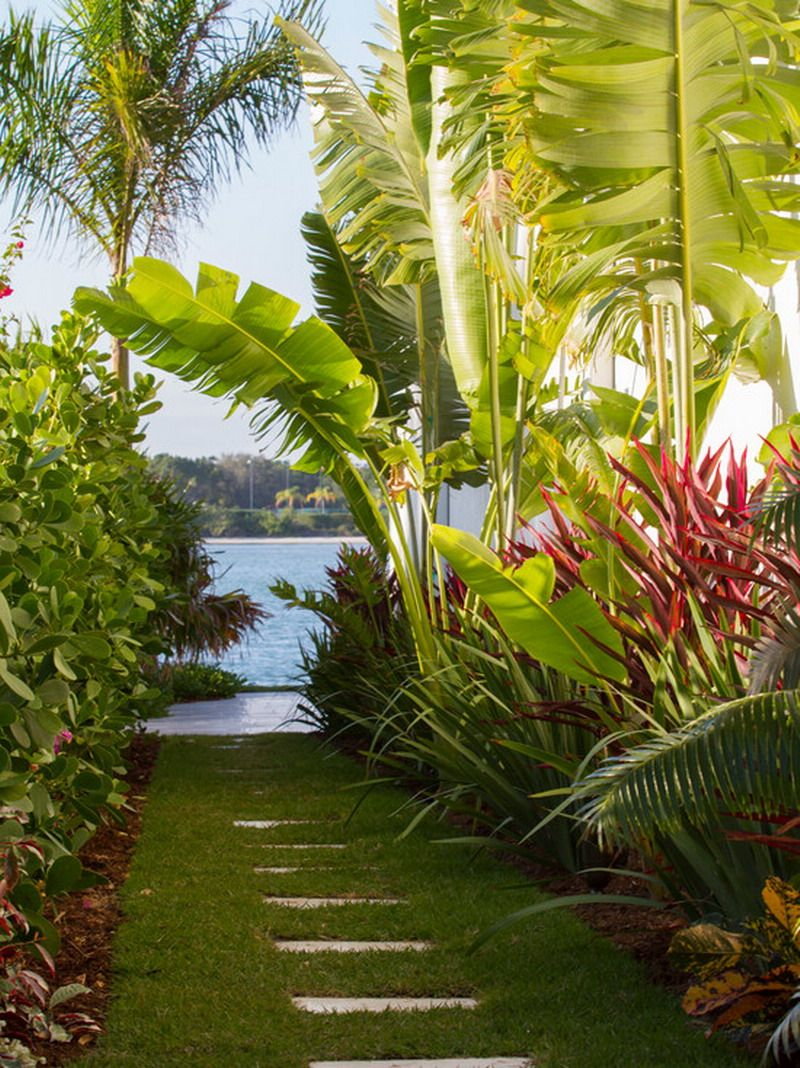 tropical hawaii garden patio landscape