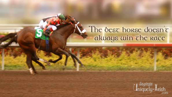 betting horses quotes
