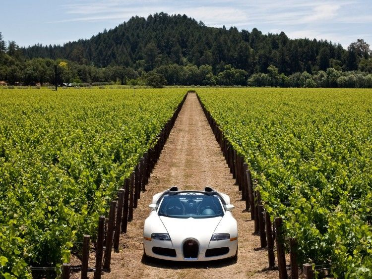Awesome 5 Star Hotels In The Us Four Seasons Napa Valley