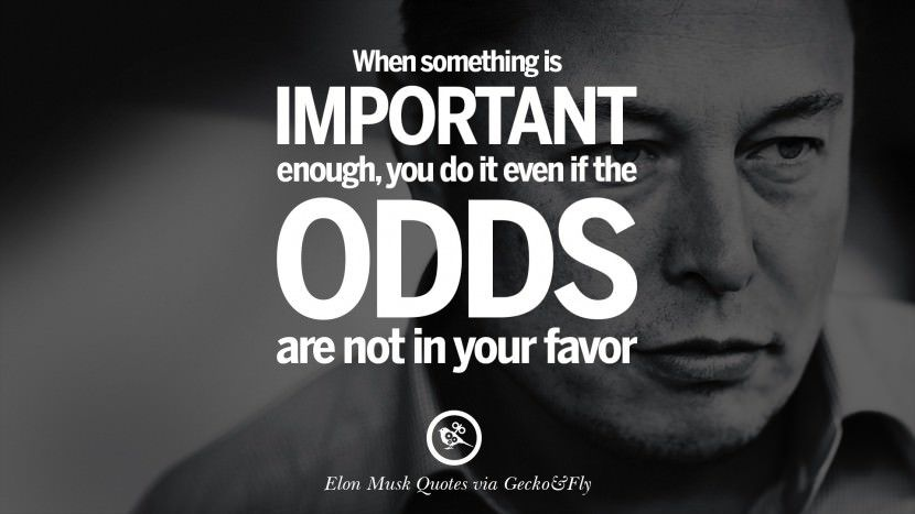 Elon Musk Quotes Pinharshita Bakshi On Sky  Pinterest  Elon Musk Quotes Elon