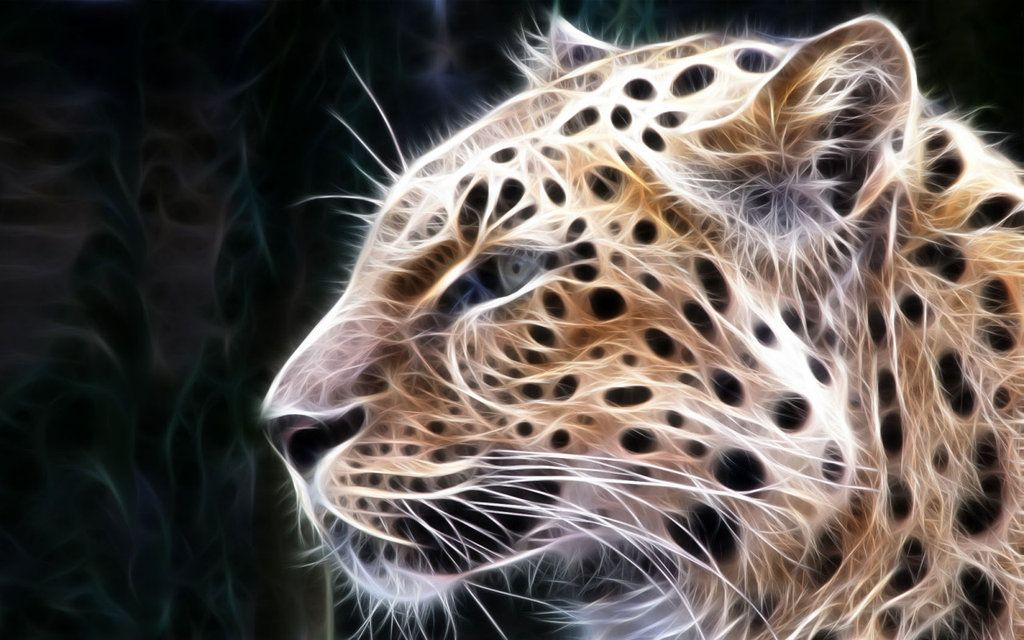 3D Animal Wallpapers Animal Wallpaper Leopard Pride by
